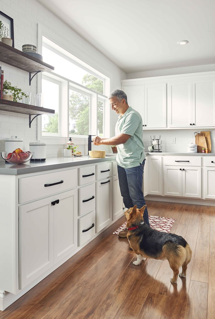 kitchen remodel with dog